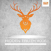 Hidden Truth #006 by Various Artists