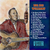 Play & Download Jinx Blues by Big Joe Williams | Napster