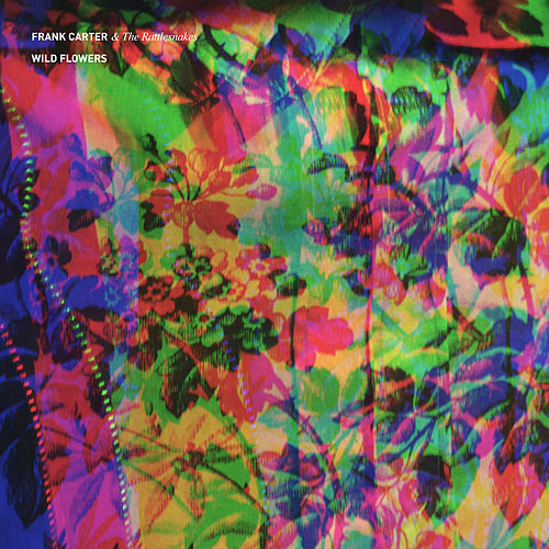 Wild Flowers by Frank Carter & The Rattlesnakes