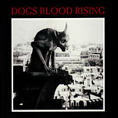 Play & Download Dogs Blood Rising (Remastered) by Current 93 | Napster