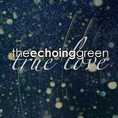 Play & Download True Love by The Echoing Green | Napster