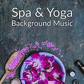 Play & Download Spa & Yoga Background Music by Nature Sounds Nature Music | Napster