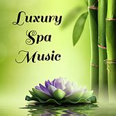 Play & Download Luxury Spa Music by Massage Therapy Music | Napster