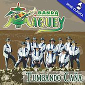 Play & Download Tumbando Caña (Edición Clásica) by Banda Maguey | Napster
