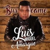 Buscame by Luis Miguel del Amargue