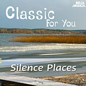 Classic for You: Silence Places by Various Artists