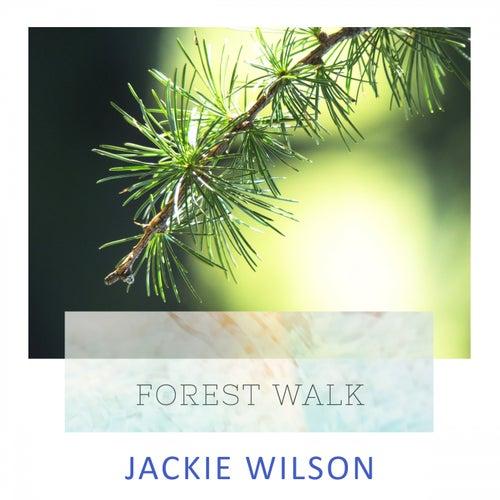 Forest Walk von Jackie Wilson