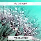 Fresh As Dew von Bo Diddley