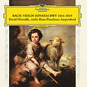 Play & Download Bach Sonatas BWV 1014-1019 by Various Artists | Napster