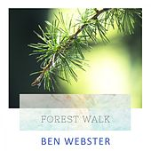 Forest Walk von Ben Webster