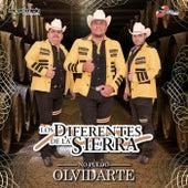 Play & Download No Puedo Olvidarte by Los Diferentes De La Sierra | Napster