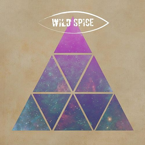 Play & Download True by Wild Spice | Napster