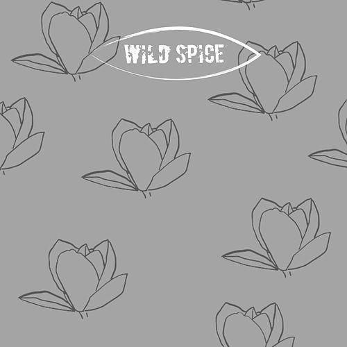 Play & Download She's on My Mind by Wild Spice | Napster