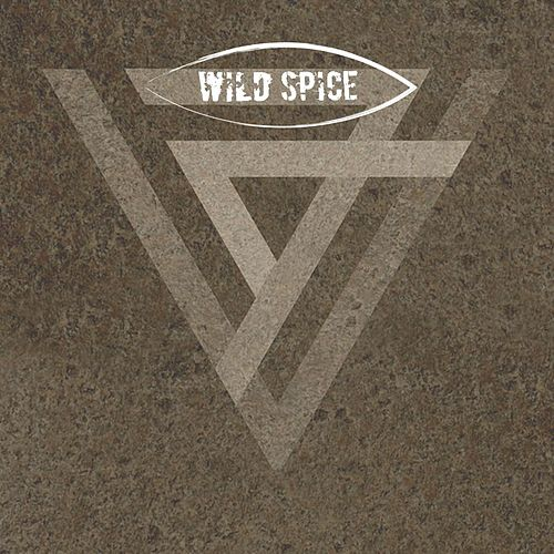 Play & Download Feel This Way by Wild Spice | Napster