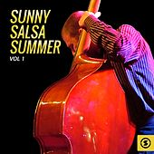 Play & Download Sunny Salsa Summer, Vol. 1 by Various Artists | Napster