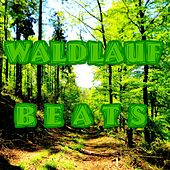 WALDLAUF BEATS (35 tech house, minimal tracks for running) by Various Artists