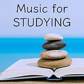 Play & Download Music for Studying by Study Focus | Napster