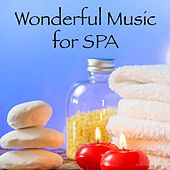 Play & Download Wonderful Music for Spa by Spa Relaxation | Napster