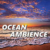 Play & Download Ocean Ambience by Ocean Ambience | Napster