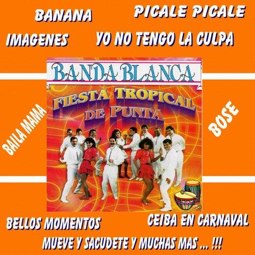 Play & Download Fiesta Tropical de Punta by Banda Blanca | Napster