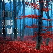 Play & Download Chillout Sounds of Nature by Various Artists | Napster