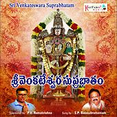 Play & Download Sri Venkateswara Suprabhatam by S.P.Balasubramaniam | Napster