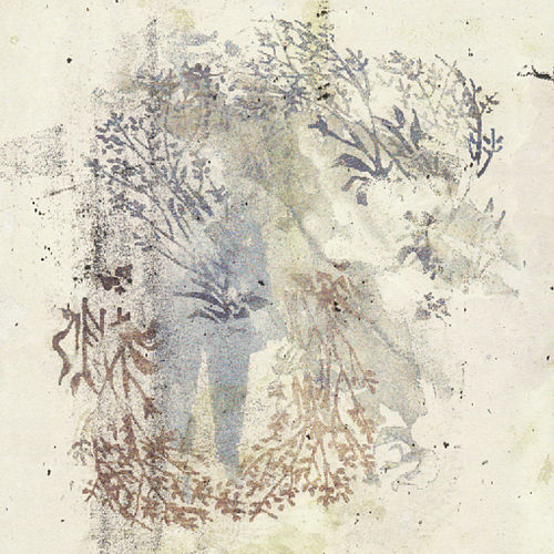 Play & Download Hoppípolla (Planet Earth II Mix) by Sigur Ros | Napster