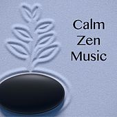 Play & Download Calm Zen Music by Zen Meditation and Natural White Noise and New Age Deep Massage | Napster