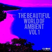 The Beautiful World of Ambient, Vol. 1 by Various Artists