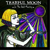In the Dark Morning by Tearful Moon