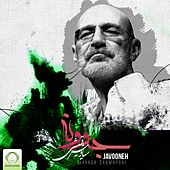 Javooneh by Siavash Ghomayshi