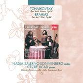 Piano Trio (Tchaikovsky) / Horn Trio (Brahms) by Nadja Salerno-Sonnenberg