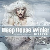 Deep House Winter Grooves - Cool Selection of Hot Tracks by Various Artists