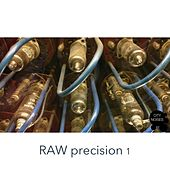 Play & Download Raw Precision, Vol. 1 by Various Artists | Napster