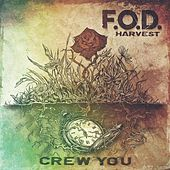 Play & Download Crew You by F.O.D. | Napster