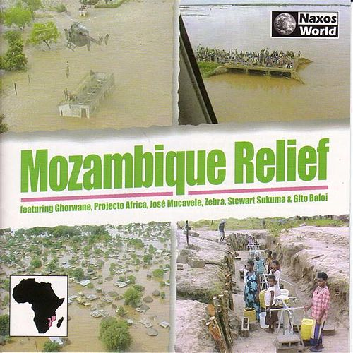 Mozambique Relief by Various Artists