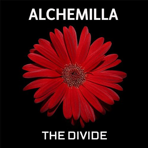 The Divide by Alchemilla