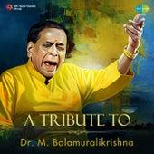 A Tribute to Dr. M. Balamuralikrishna by Dr. M. Balamuralikrishna