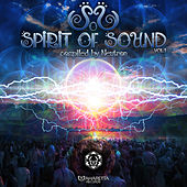 Spirit of Sound Vol1 by Various Artists
