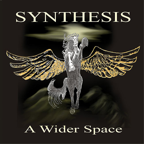 Play & Download A Wider Space by Synthesis | Napster