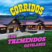 Corridos Sin Limite by Los Tremendos Gavilanes