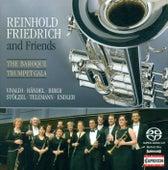Biber, Telemann, Handel, Vivaldi, Endler, & Stolzel: Baroque Trumpet Gala by Various Artists