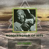 Wonderworld Of Hits von Various Artists