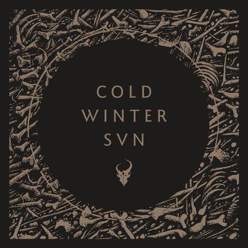 Cold Winter Sun de Demon Hunter