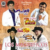Los Magníficos de Tierra Caliente (Serie Titanium) by Various Artists