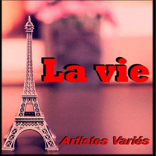 La Vie by Diam's