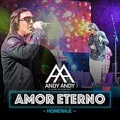 Play & Download Amor Eterno (Homenaje Version Bachata) by Andy Andy | Napster
