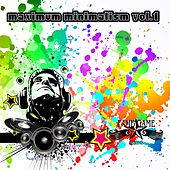 Play & Download Maximum Minimalism, Vol. 1 by Various Artists | Napster