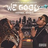 Play & Download We Good by Mizznekol | Napster
