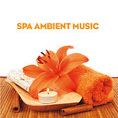 Spa Ambient Music (To Uplift Your Body and Mind) by Various Artists